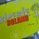 Roland mini